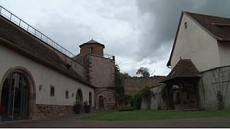 Découvrez Westhoffen, capitale de la cerise, son rempart classé monument historique et son sequoia classé