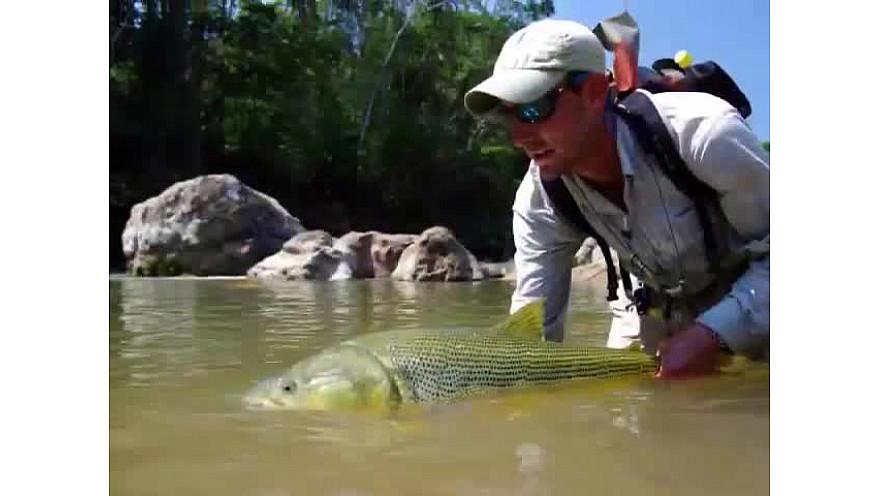 Pêche du dorado dans la jungle bolivienne